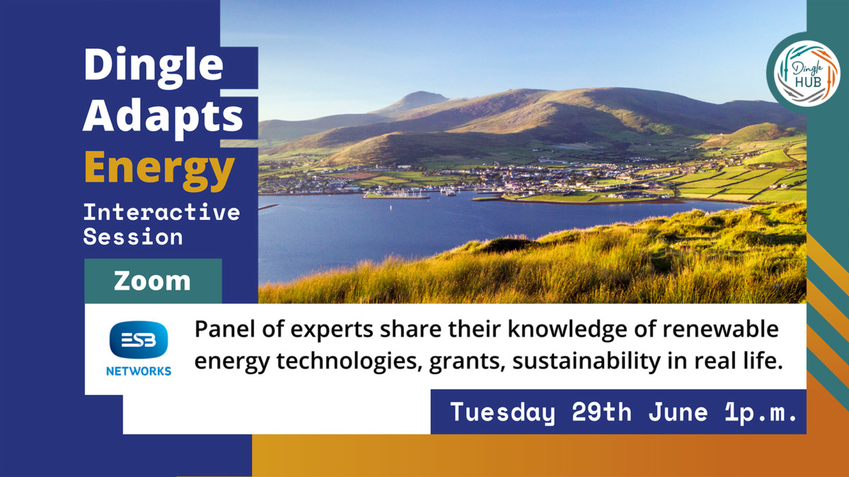 Read more about the article Dingle Adapts Energy