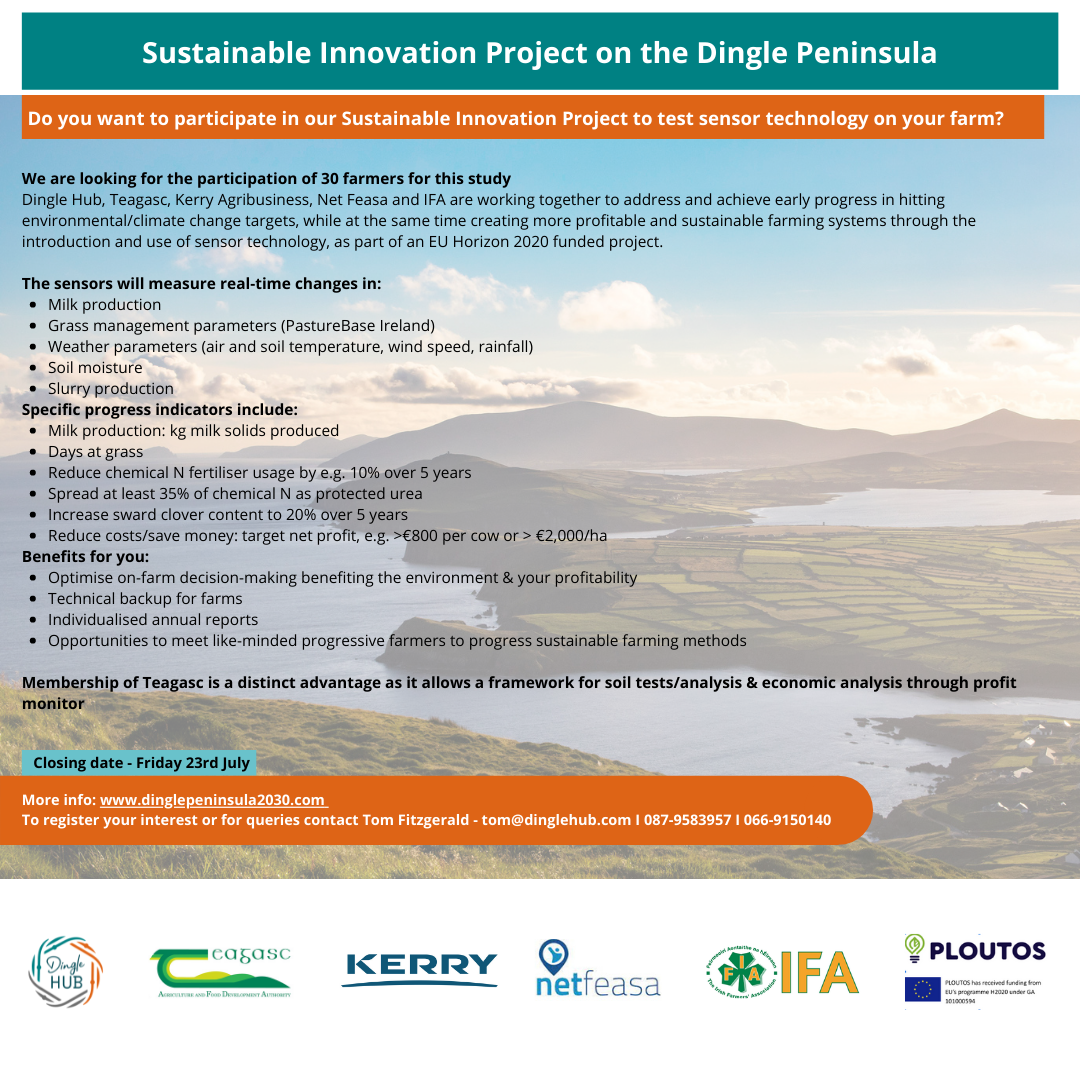 Sustainable Innovation Project on the Dingle Peninsula